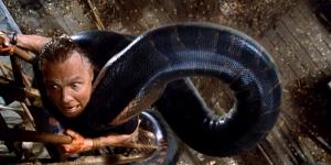 anaconda whatculture com